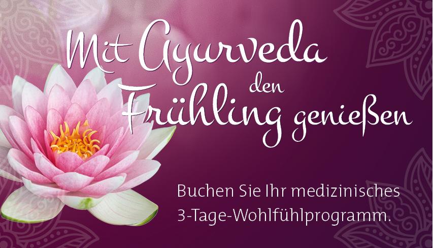 vorlage_facebook_01[1]